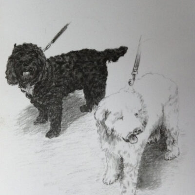 Drawing Of Two Pets